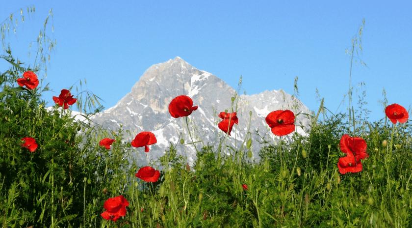 Guida e consigli sulle vacanze in Abruzzo